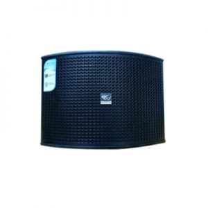Loa Karaoke Fly KR550 Pro