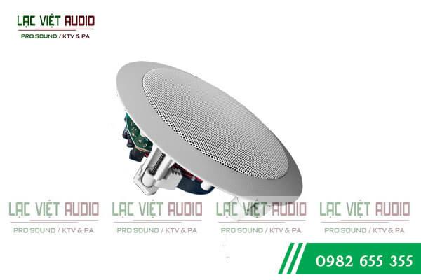 Đặc điểm loa âm trần DB TS603