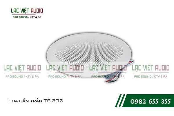 Mua loa âm trần DB TS603 tại Lạc Việt Audio